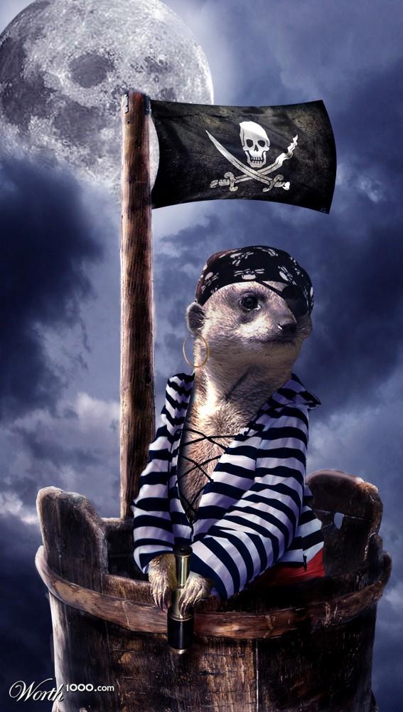 20101225191016-luna-pirata.jpg