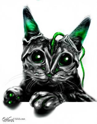 20110412202535-aliencat.jpg