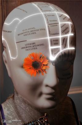 20110426201107-cognitive-horizon.jpg