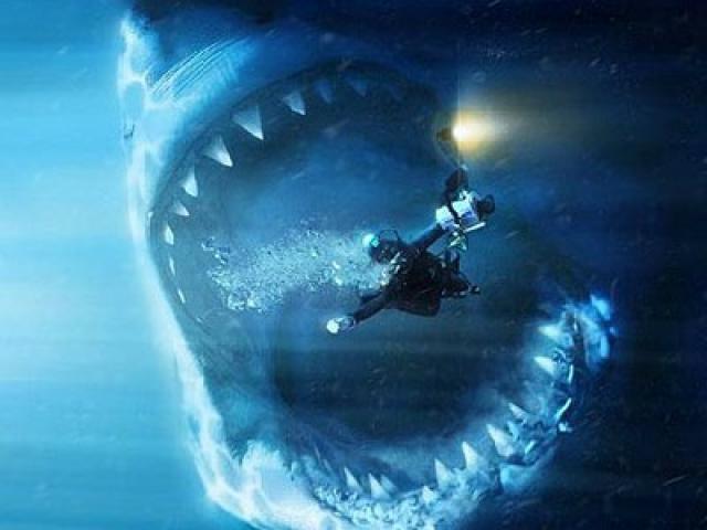 20110428073443-shark.jpg