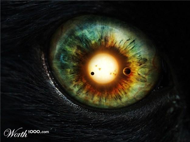 20110921072245-eye-fiera.jpg