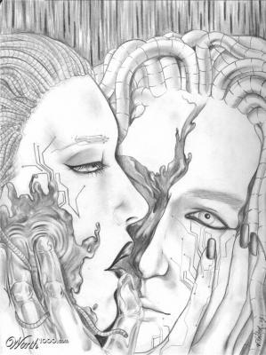 Ello y sombra (4)